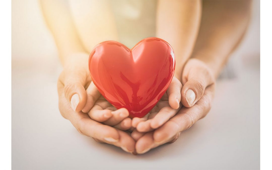 parent's hands holding child's hands, which is holding a red heart